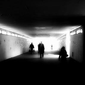 Untitled by Tomislav Zebic - City,  Street & Park  Street Scenes (  )