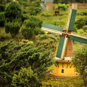 SAM_2545 Windmill Pixoto.jpg