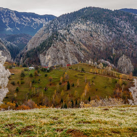 late October by Irina Mihai - Landscapes Weather