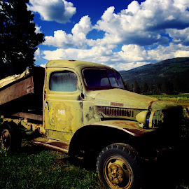 Old Dodge Truck by Amy Brown - Transportation Automobiles ( mountains, old, truck, colorado, auto, dodge, antique, classic )