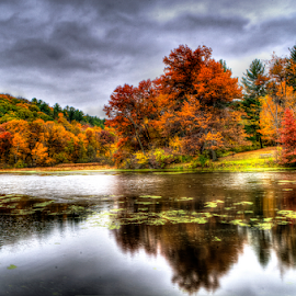 Gray Fall Day by John Larson - Landscapes Waterscapes ( clouds, water, color, reflections, trees, lake, picnic table )