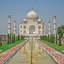 Tajmahal by Ajay Singh - Buildings & Architecture Statues & Monuments ( taj, famous, building, arch, tajmahal, dome, tourism, architecture, past, history, ancient, mahal, horizontal, outdoors, civilization, agra, place )
