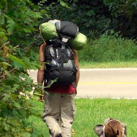 No slacker! by Debbie Eaton - People Street & Candids ( doggie backpack, walking dogs, hike, creeper trail, dog hiker )