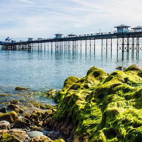 Pier Rocks1.jpg