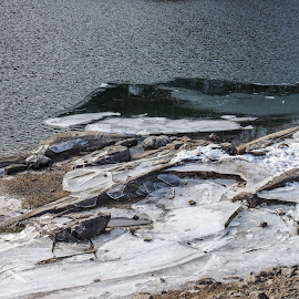 Cold by Mauro Amoroso - Nature Up Close Rock & Stone ( winter, cold, ice, ceresole )