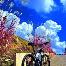 Under The Blue Sky by Gatot Sulistyawan - Transportation Bicycles