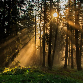 O zi luminoasa... by Sveduneac Dorin Lucian - Landscapes Sunsets & Sunrises