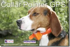Collar GPS para Perros