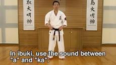 Lifelong Kyokushin Karate 02のおすすめ画像2