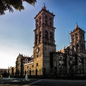 Downtown at Puebla City by Cristobal Garciaferro Rubio - Buildings & Architecture Public & Historical ( church, mexico, puebla, cathedral )
