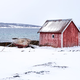 Snowy red by Tom Davidson - News & Events Weather & Storms ( snow, ixtussy, tromso, boat, boat house, norway, winter, cold,  )