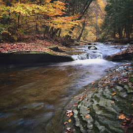 Cascade above Sullivan Falls, 2014.10.18 by Aaron Campbell - Instagram & Mobile iPhone ( stream, nature, iphone5s, autumn, sullivanrun, cascade, slowshutter, october, sgl13, sullivancounty )