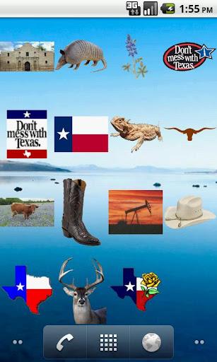 テキサス物画面のウィジェット