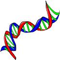 Genome Glossary icon