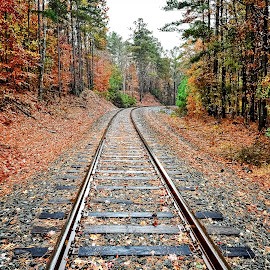 Cape Fear River Railway by Lou Plummer - Instagram & Mobile iPhone ( iphone )