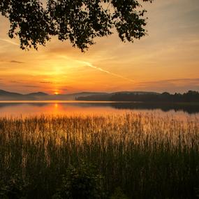 summer night by Rose-marie Karlsen - Landscapes Sunsets & Sunrises ( clouds, nature, sunset, trees, lake, landscape, norway,  )