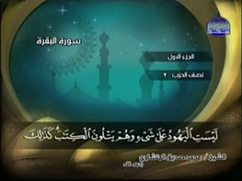 Screenshot of Muslim TV