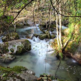 Cascata by Graça Cortez - Landscapes Waterscapes (  )