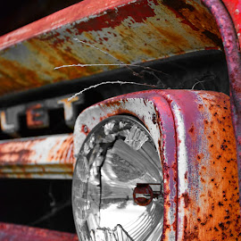 What These Eyes Have Seen by Kristi Garthwaite - Transportation Automobiles ( old, entangled, single, tanker, ruin, forlorn, solitude, rusty, venerable, forgotten, rustic, aged, ancient, solo, bleak, tree, outdated, derelict, unused, pine, alone, bedraggled, isolated, grass, gasoline, forest, antiquated, cheverolet, chevy, neglected, serene, shabby, dour, abandon, antique, outside, abandoned, decay, utilitarian, calm, not wanted, truck, vehicle, one, retired, battered, tanker truck, grim, olden, no people, forsaken, rust, decayed, solitary, texaco, ominous, time-worn, overgrown, vintage, green, old-fashioned, deserted, red, relic,  )