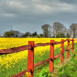 nice fence by Nick Wastie - Landscapes Prairies, Meadows & Fields