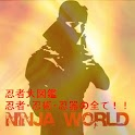 Ninja World icon