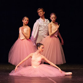 Ballet Quartet by Michael Holser - People Musicians & Entertainers ( pink, ballet, stage )