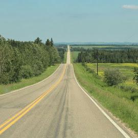 The Long Way Home by Joleen Larsen - Transportation Roads ( almost flat, alberta, rolling, summer, long,  )