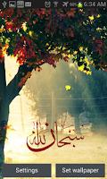 Screenshot of Islamic ramadan LiveWallpaper
