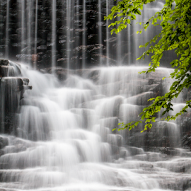 Waterfalls by Dave Martin - Nature Up Close Water ( waterfalls )