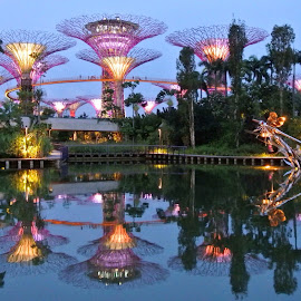 Gardens by the Bay Reflections, Singapore by Natasha Giles - Buildings & Architecture Public & Historical ( holiday, trees, gardens, gardens by the bay, architecture, singapore, singapore river,  )