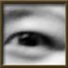 eyeTestsDroid icon