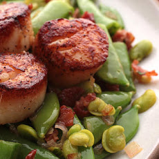 Seared Scallops with Fava Bean Sauté