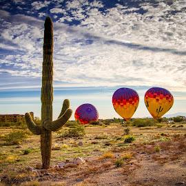 Desert Flight by Mike Karels - Landscapes Deserts ( hot air balloon, vacation, liftoff, 2015, arizona, balloon )