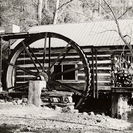 The water wheel by Angee Cox Randolph - Buildings & Architecture Public & Historical ( water, cabin, old, wheel, old town )