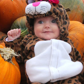 Twenty Eight Weeks10-26-14Our little kitten by Andrea Bryant - Babies & Children Babies