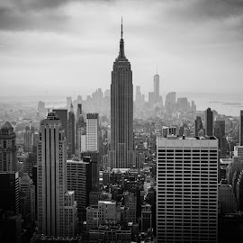 Empire State by Joe Adams - City,  Street & Park  Skylines ( black and white, top of the rock, empire state building, manhattan, nyc )