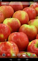 Screenshot of Tasty Fruits Live Wallpaper