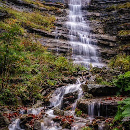 Waterfall by Nik Coli - Landscapes Forests ( water, green, wallpaper, waterfall, canvas, forest, scenic, waterscapes, print, silky, autumn, jungle, creek, fall, brown, landascapes, nikon, rocks, river )
