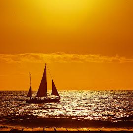 Contrejour by Radu Eftimie - Landscapes Sunsets & Sunrises ( twilight, boat, atlantic )