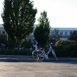 Alone but not Lonely by Julie Richter - Transportation Bicycles ( parking lot, facebook, alone, bicycle )