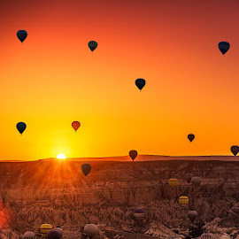 Balloons At Sun Rise by Nayyer Reza - Transportation Other ( sun rise, color, ht air balloons, turkey, balloons, nayyer, cappadocia, reza )