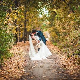 Alex and Kristina by Sandro Pehar - Wedding Bride & Groom ( 5d mark 2, 135mm, dip, wedding, fall )