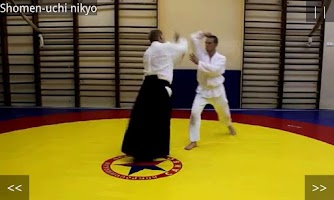 Screenshot of Aikido Test 5 kyu