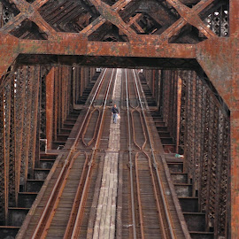 Long Walk at the End of the Day by Jonna Flynn - Buildings & Architecture Bridges & Suspended Structures ( jacksonville, rairoad, csx, florida, trestle, train, bridge, st johns,  )