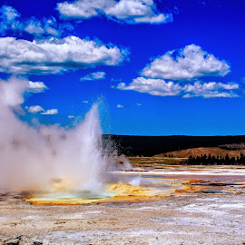 Yellowstone Heat by Jeremy Solesbee - Landscapes Travel ( picasa, montana, fiona, road, trip, kristen )