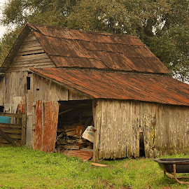 Old Barn by Ron Olivier - Buildings & Architecture Other Exteriors ( old barn )