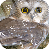 Download Sweet Owl Keyboard Theme APK for Android Kitkat