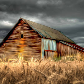 Old barn in Western Oregon by Tyler Henderson - Digital Art Places ( barn oregon hdr old building )