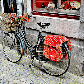 a little break.. by Dragan Rakocevic - Transportation Bicycles ( red flower, colors, street, street scene, bicycle )