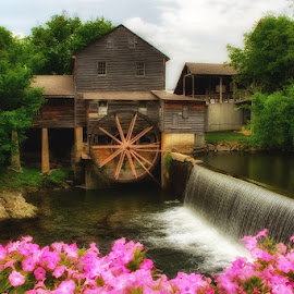 The Old Mill by Fred Herring - Buildings & Architecture Other Exteriors